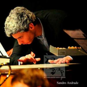 Sandro Andrade percussionista
