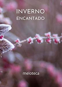 Inverno Encantado (Edição Online)