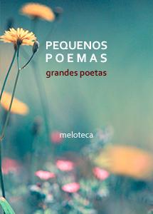 Pequenos Poemas (Edição Online)