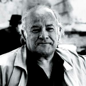 Manuel da Fonseca, poeta