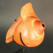 Caracol trompeta, Museo Chileno de Arte Precolombino